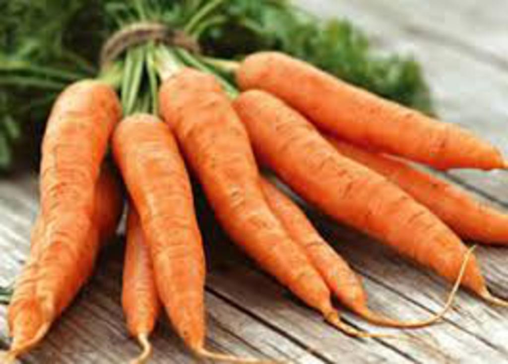 Organic Carrots Bulk Carrots Bulk no Tops