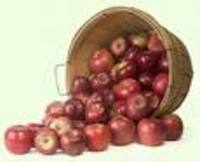 .5_bushel_of_apples