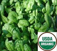 A_______spinach_usda